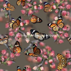 Digital jersey Orange Butterflies